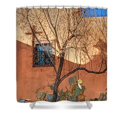 Albuquerque Mission Shower Curtain