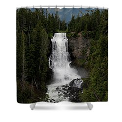 Shower Curtain featuring the photograph Alexander Falls by Rod Wiens