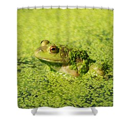 Algae Covered Frog Shower Curtain by Optical Playground By MP Ray