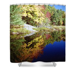 Algonquin Reflection Shower Curtain