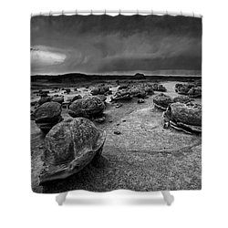 Alien Eggs At The Bisti Badlands Shower Curtain by Keith Kapple