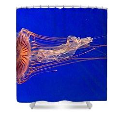 Alien Shower Curtain by Eti Reid