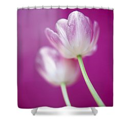 Alike Shower Curtain by Lana Enderle