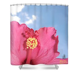 Blissful 33 Shower Curtain