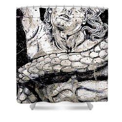Alkyoneus - Detail No. 1 Shower Curtain by Steve Bogdanoff