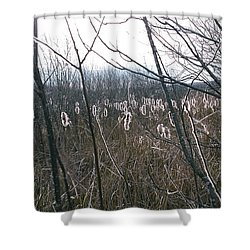 Shower Curtain featuring the photograph All Aglow by David Porteus