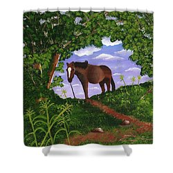 All Alone Shower Curtain by Laura Forde