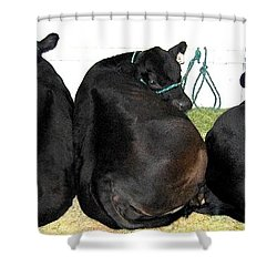 All Eyes Front Shower Curtain