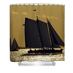 All Sails Sunset In Key West Shower Curtain