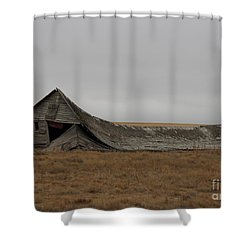 Shower Curtain featuring the photograph All That Remains by Ann E Robson