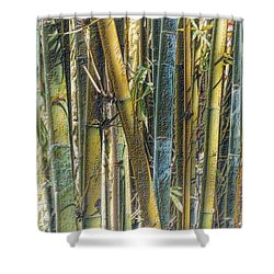 Shower Curtain featuring the photograph All The Colors Of The Bamboo Rainbow by Nadalyn Larsen
