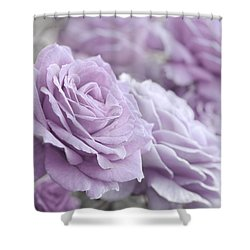Shower Curtain featuring the photograph All The Soft Violet Roses by Jennie Marie Schell