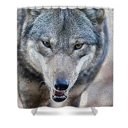 All Wolf Shower Curtain by Karol Livote