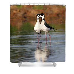 Shower Curtain featuring the photograph All You Need Is Stilt Love by Ruth Jolly