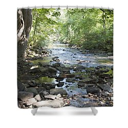 Shower Curtain featuring the photograph Allen Creek by William Norton