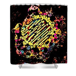 Dialated Pupil Shower Curtain