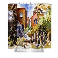 Shower Curtain featuring the painting Alleyway Charm 2 by Rae Andrews