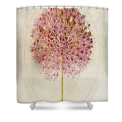 Allium Pink Jewel Shower Curtain by John Edwards
