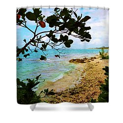 Shower Curtain featuring the photograph Almond View by Amar Sheow