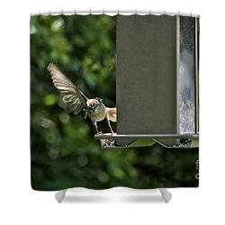 Shower Curtain featuring the photograph Almost A Ruff Bird Landing by Thomas Woolworth