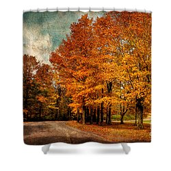 Almost Home Shower Curtain by Lois Bryan