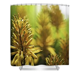 Aloe 'kujo' Plant Shower Curtain