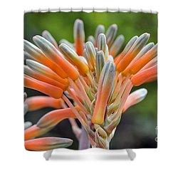 Aloe Vera Flower Shower Curtain by George Atsametakis