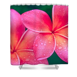 Aloha Hawaii Kalama O Nei Pink Tropical Plumeria Shower Curtain by Sharon Mau