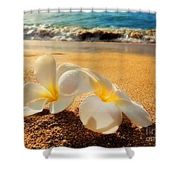 Shower Curtain featuring the photograph Aloha by Kristine Merc