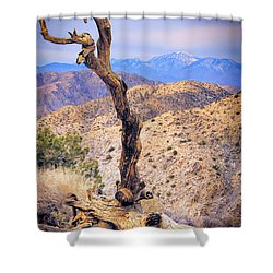 Alone In The Desert Shower Curtain by Mariola Bitner