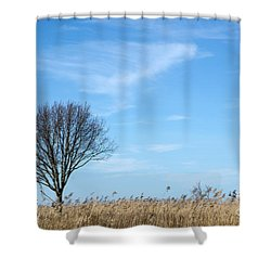 Shower Curtain featuring the photograph Alone Tree In The Reeds by Kennerth and Birgitta Kullman