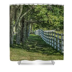 Shower Curtain featuring the photograph Along A Country Road by Jane Luxton
