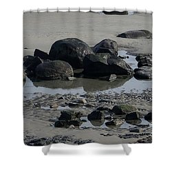 Along A Maine Beach Shower Curtain by Eunice Miller
