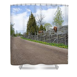 Shower Curtain featuring the photograph Along An Old Fashioned Road by Kennerth and Birgitta Kullman
