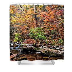 Along Fall Creek Shower Curtain