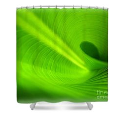 Along The Curve Shower Curtain by C Ray  Roth