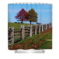 Along The Fence Shower Curtain by Eric Liller