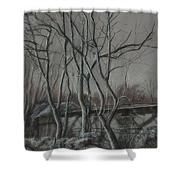 Along The Greenway 2 Shower Curtain by Janet Felts
