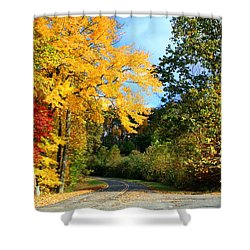 Shower Curtain featuring the photograph Along The Road 2 by Kathryn Meyer