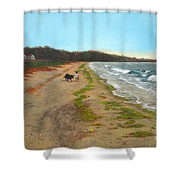Along The Shore In Hyde Hole Beach Rhode Island Shower Curtain by Christopher Shellhammer