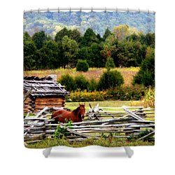 Along The Wilderness Trail Shower Curtain by Karen Wiles