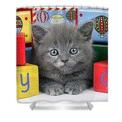 Alphabet Cat Ck415 Shower Curtain by Greg Cuddiford