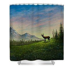 Alpine Beauty Shower Curtain by C Steele
