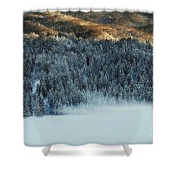 Alpine Forest Shower Curtain