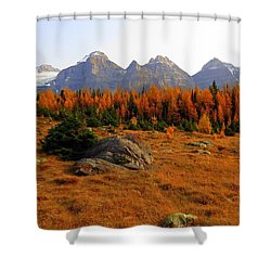 Alpine Larch Meadow Shower Curtain by Ramona Johnston