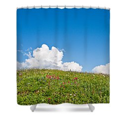Alpine Meadow And Cloud Formation Shower Curtain
