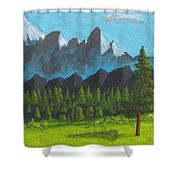Alpine Meadow Shower Curtain