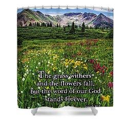 Alpine Meadow Shower Curtain by Priscilla Burgers