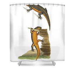 Alpine Newt Shower Curtain