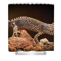 Alpine Newt Shower Curtain by Dirk Ercken